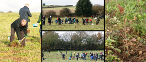 Tree planting collage Victoire Press sm